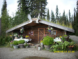 Hunter's place Fairbanks Alaska