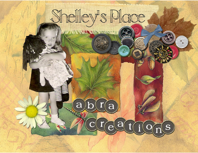 Shelley's Place