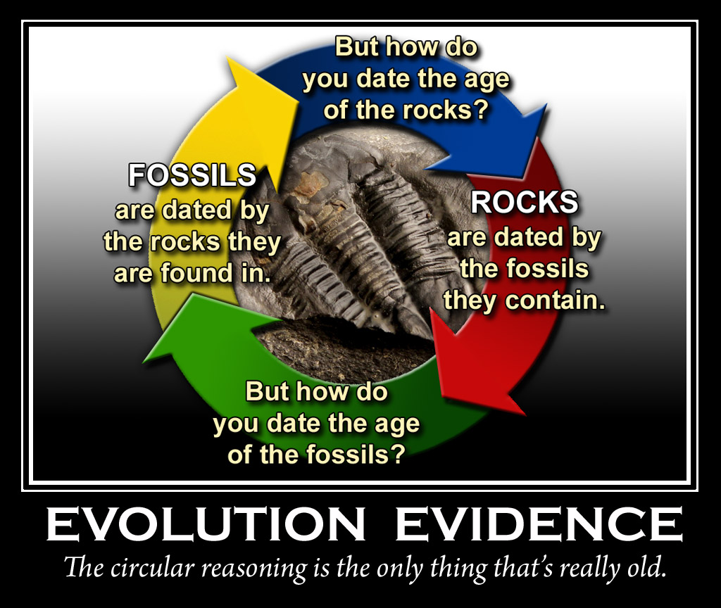 Fossil dating evolution