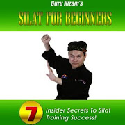 Learn SILAT ONLINE NOW!!!