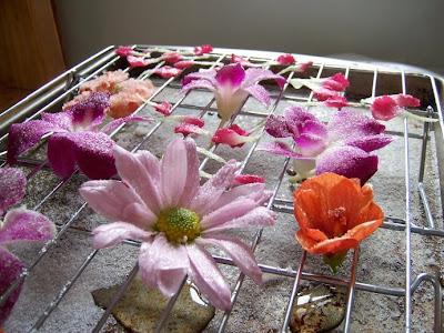 Flowers+Cake+016.jpg