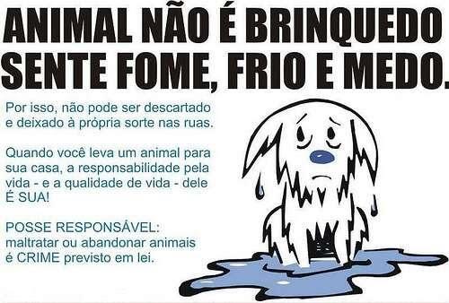 NÃO COMPRE ANIMAIS, ADOTE!!!BICHO É TUDO DE BOM .