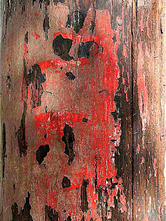 Red Face on Wooden Telephone Pole (c) David Ocker