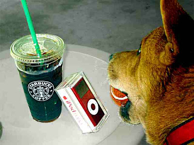 Starbucks Coffee, $2.55; Apple iPod, $249; our dog Chowderhead, priceless