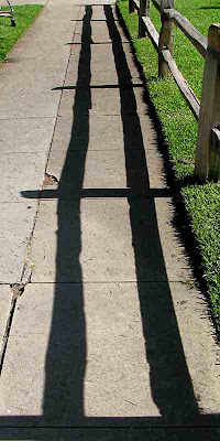 Fence Shadow (c) David Ocker