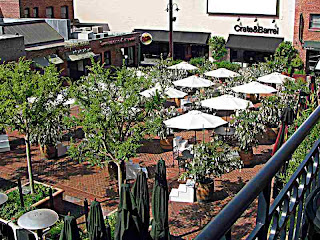 Yoko Ono Wish Trees Pasadena CA
