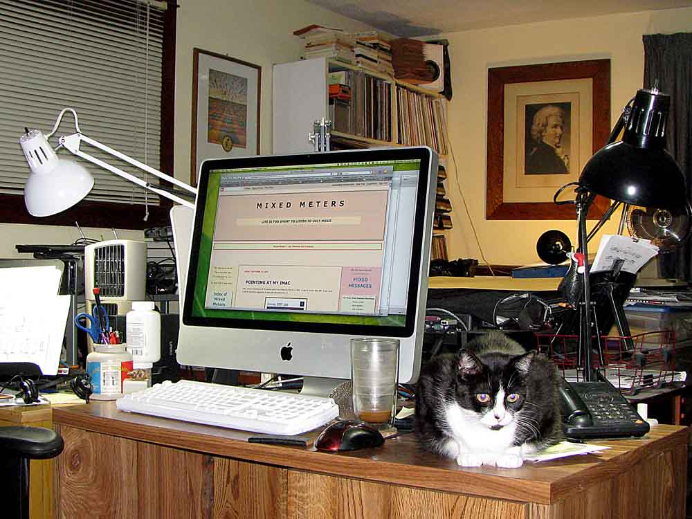 David Ocker's other computer desk watched over by Ivy the cat