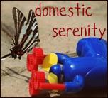 Domestic Serenity