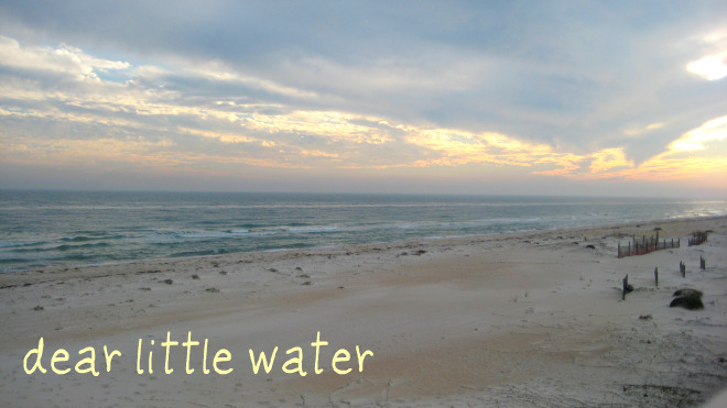 dear little water