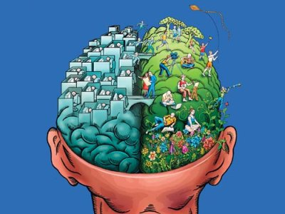 funciones del cerebro humano. del cerebro son necesarios