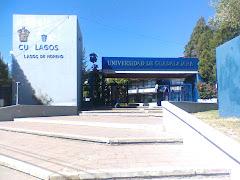 Centro Universitario de Los Lagos
