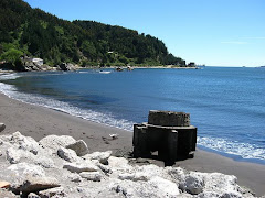 Playa Lenga - Hualpén