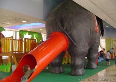 cu elefante brinquedo