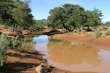 Flußlandschaft in Namibia
