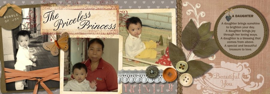 The Priceless Princess