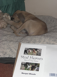 Picture of the book (Mud Heaven) With Tracker ignoring it in the back ground