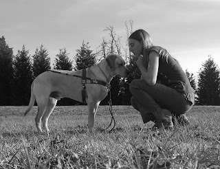 Black/white picture of Toby & I, Toby is wearing the harness in a stand-stay, I'm kneeling down looking at him