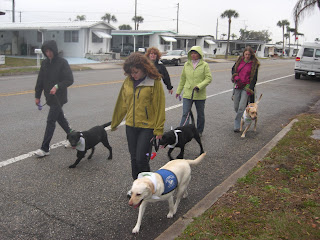 Picture of some people in our group walking.  Dogs in the picture are Tina, Bingo, Sparkie, and Toby