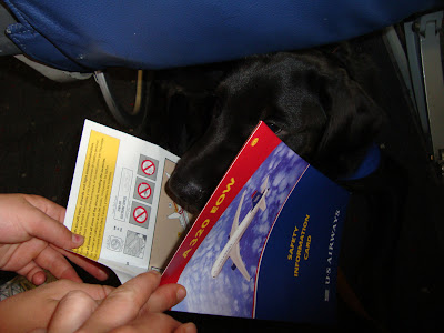 Picture of Rudy reading the airport safety card!