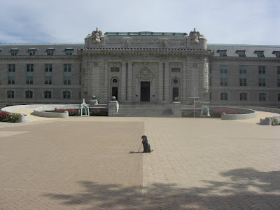 Picture of Rudy in a sit-stay by him self.  He's in front of the USNA dorm building.  Which is the biggest dorm building around!