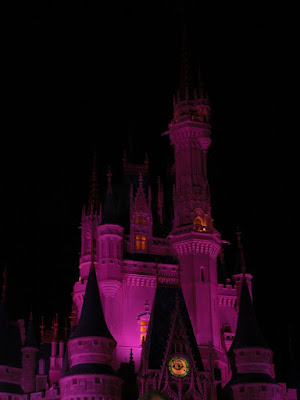 Photo taken at night of the Cinderella Castle