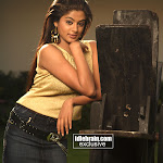 Priyamani New Spicy Pics Collection