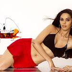 Hot & Sexy Mallika Sherwat