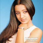 Lovely Trisha Picture Gallery