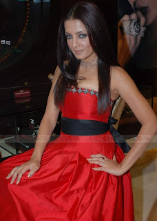 Celina Jaitley Hot Pictures In Red Dress