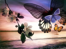 Las mariposas son flores que vuelan...