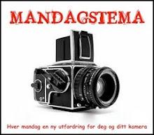 Glad i å fotografere?