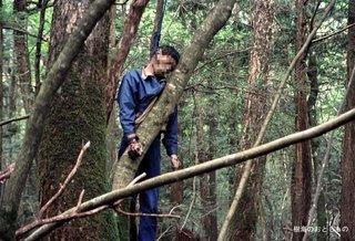 Lendas Urbanas Aokigahara