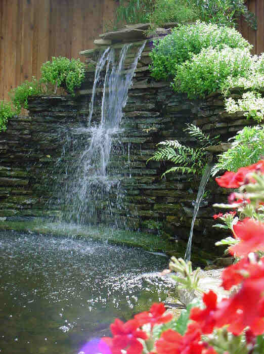 Koi pond with waterfall koi fish care info for Koi pond photos