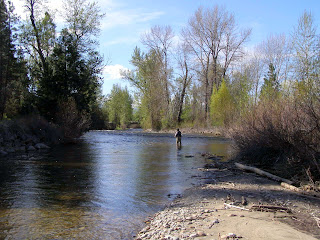 Angler wading on the West Fork of the Bitterroot River