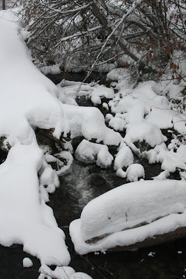 Snow in Gash Creek in the Bitterroot Mountains west of Victor
