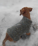 Пуловер за кученце