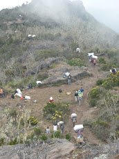 Machame Trail