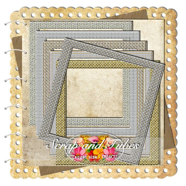SIlver and Gold Frames (CU4CU) Silver+and+Gold+Frames_Preview_Scrap+and+Tubes