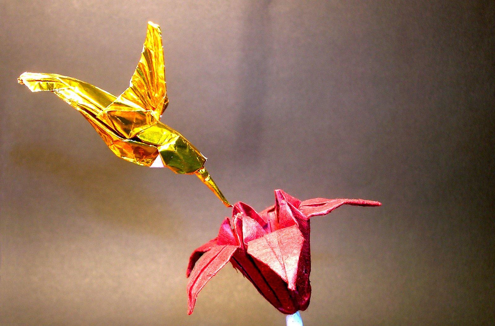 [hummingbird+copy.jpg]