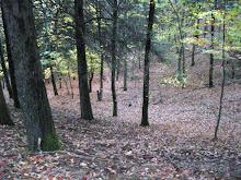 Outono na serra