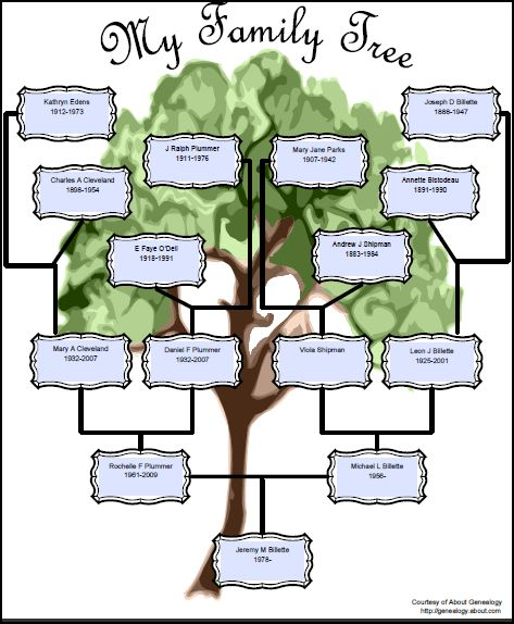 how to lay out a family tree
