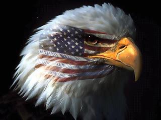 http://4.bp.blogspot.com/_u2Gx12LczsY/TNGC8OxU55I/AAAAAAAAAkU/SpIhLdYBg_c/s1600/American_Eagle.jpg