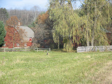 Deep Spring Farm