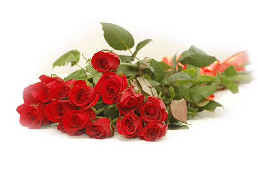 i love u rose wallpaper. Gift these roses wallpapers to