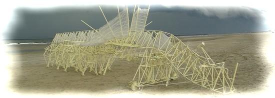 strandbeesttop.jpg (550×197)