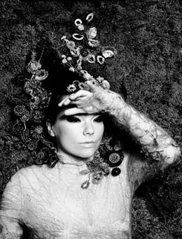 music and style: Björk