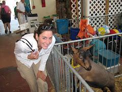 My Goat Buddy