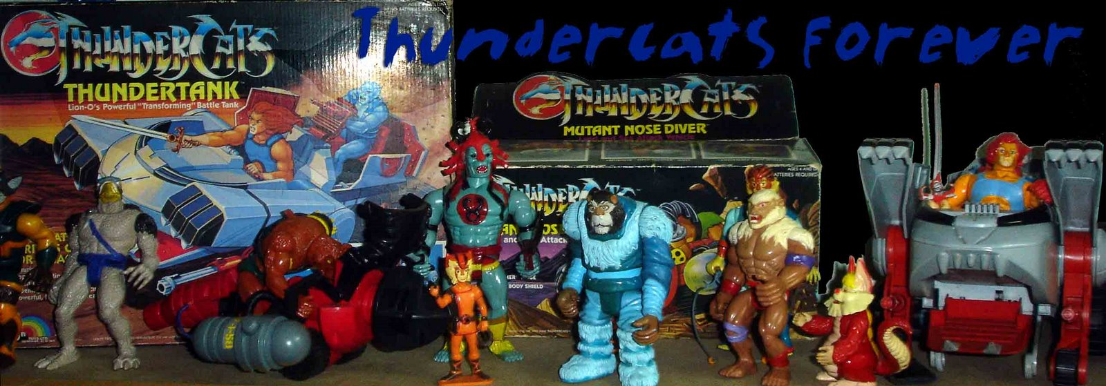 Wilson's Thundercats Collections