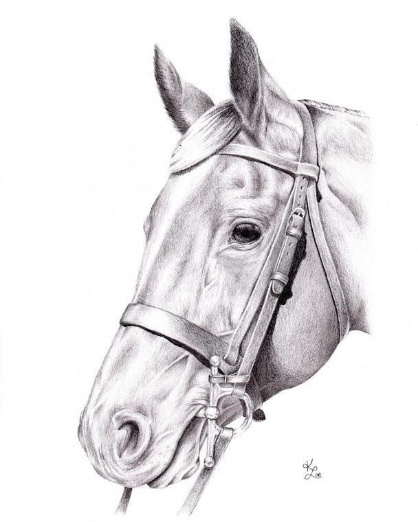 """""""The Horse"""" 8"""" x 10"""" Original Illustration"""