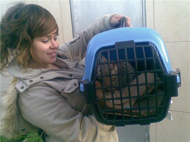 Adopcion en diciembre 2008!